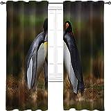 Cortinas opacas con ojales oscuros, pingüinos abrazando en la...