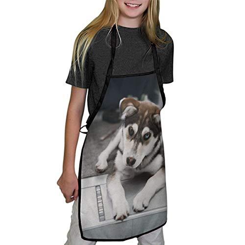 N/A schorten voor kinderen de Husky hond leggen op het tapijt in de buurt van de trappen kinderschorten kind chef-kok schorten voor jongens en meisjes koken bakken schilderen schorten in 2 maten