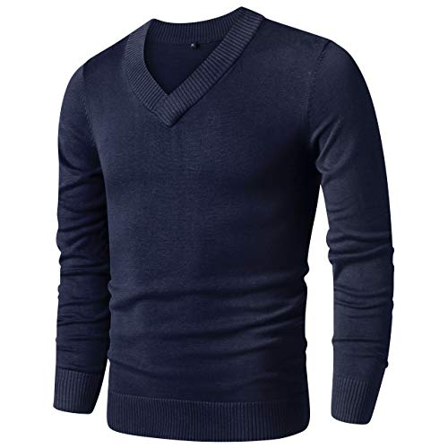 LTIFONE Sweaters for Men,V Neck Slim Comfortably,Knitted Long Sleeve (Blue,M)
