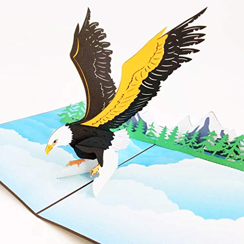 Eagle Pop Up Birthday Card - Happy Birthday Pop Up Card for son, daughter, wife, friends, Nature, Wild Animal, Bird lovers | Pop Card Express (Eagle Pop Up Card)