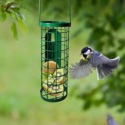 Fanlary Comedero para Pájaros Silvestres Que Cuelga para La Decoración Exterior del Jardín, Revestimiento Antioxidante Y Caparazón, Comedero para Pinzones, Semillas De Aves Y Más Latest