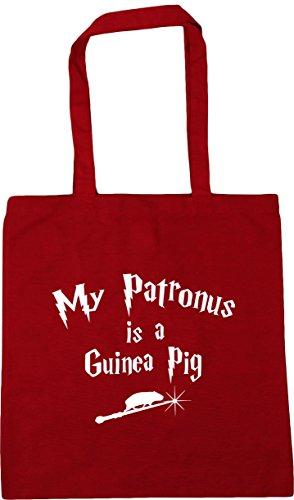 HippoWarehouse My Patronus Is A Guinea Pig Tote Shopping Gym Beach Bag 42cm x38cm, 10 litres