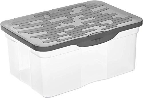 Rotho Ranger Aufbewahrungsbox A4 mit Deckel, Kunststoff (PP), Transparent/Anthrazit, 13 Liter