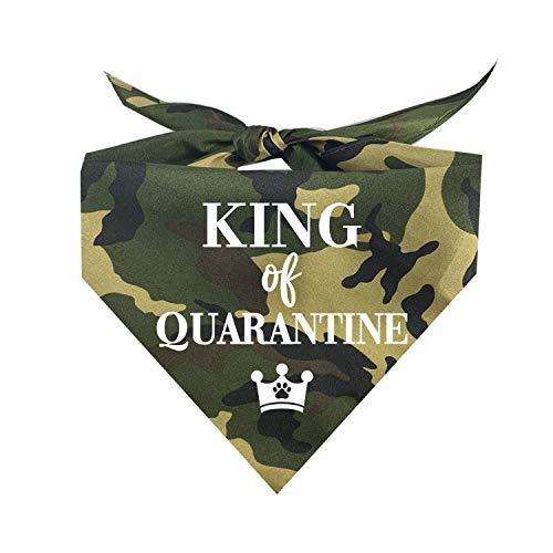 King of Quarantine Social Distance Quarantine Dog Bandana (Assorted Colors)
