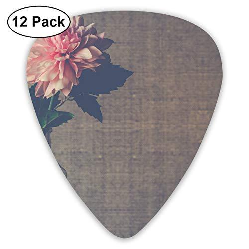 Tbhsga Vase mit Blumenmuster aus klarem Glas mit rosa Dahlien-Blume in Blüte, 12-teiliges Gitarrenplektrum, 0,96 mm, 0,71 mm, 0,46 mm, für Gitarre, Bass und E-Gitarre