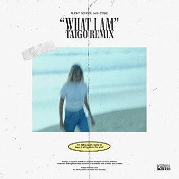 What I Am (with CVBZ) - Taigo Remix