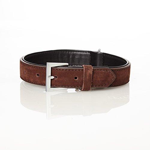 Pets&Partner® Hundehalsband aus Wildleder für große und kleine Hunde, M | 1,9 x 45 cm