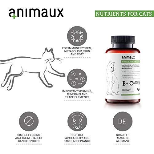 Katzen-Vitamine zur Stärkung des Immunsystems | Unterstützt den Zellschutz auf natürliche Weise | animaux – nutrients for cats | Vom Tierarzt empfohlen | DL-Methionin für einen ausgewogenen Stoffwechsel | Unterstützt das Leistungspotential | rein natürliche Geschmacksträger | hohe Geschmacksakzeptanz | Zink, Mangan, Selen | für gesunde Haut und ein glattes, glänzendes Fell - 6