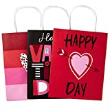 Hallmark 9' Medium Valentines Day Paper Gift Bags Assortment (Pack of 3, Red and Pink Valentine Hearts)