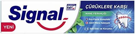 Signal Çürüklere Karşı Nane Ferahlığı Diş Macunu 100 ML 1 Paket (1 x 100 ml)