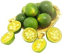 50 個 柑橘の種子 マンダリン オレンジ シアン ミニ キンカン 甘酸っぱいジューシーな人気の新鮮な果物 植え付けが簡単 耐寒性 高収量 急速な成長 エブリグリーン デコレーション ツリー