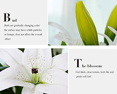 MEIWO Künstliche Blumen, 5 Stück Real Touch Latex Künstliche Lilien Blumen in Vasen Hochzeit Sträuße/Home Dekor/Party/Graves Arrangement(Rosa) - 5