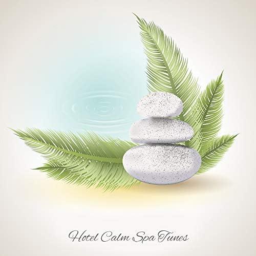 Pure Spa Massage Music, Meditation Spa Society, Deep Sleep Relaxation Universe