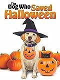 Le chien qui sauva Halloween