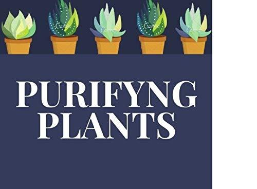 Purifyng Plants: Las 10 principales plantas purificadoras de aire