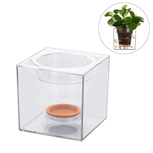 LEIXNDPLBO Creative Double Use Kunststoff Blumentopf FischzuchtHarz Becken Automatische BewässerungsanlageTransparent Desktop Cube Blumentopf, Rot