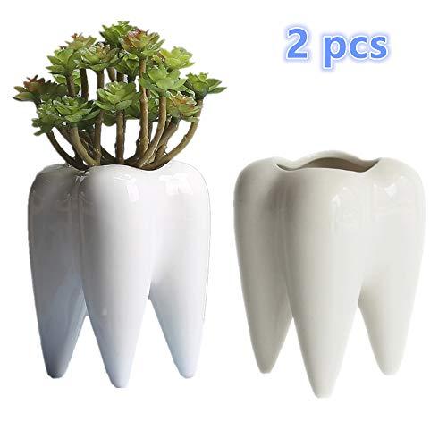 2 Pcs Teeth Pots White Ceramic Succulent Planter Pots Flower Plant Containers Cartoon Planter Pots Plant Window Boxes Creative Pen Pencil Holder for Home Office Desk Decor Birthday Christmas Gift