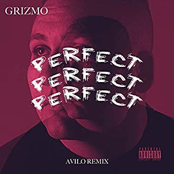 Perfect (feat. Grizmo)