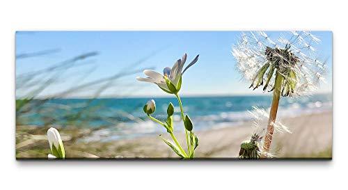 Paul Sinus Art Ivi König Wandbild 100x40cm Pusteblume Blumen Meer Strand Sommer Wärme Fokus