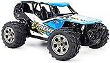 LJYY Coche de Control Remoto de Escalada de Alta Velocidad de 2.4G para niños y niñas, 1/18 2WD Emulación Carga USB Buggy RC, Neumático Grande Antideslizante Monster RC Truck (Color: Azul)