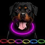 CCWW Collar luminoso LED para perros y gatos, recargable por USB, longitud ajustable, 3 modos