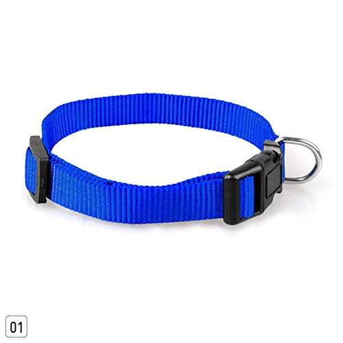 QWERTYU Robustes einfarbiges Katzenhalsband für Hunde aus Nylon 4-Fach verstellbares Halsband SMX XL, Blau, XL