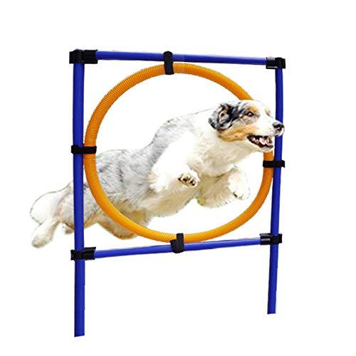 Juego De Agilidad Para Perros: Equipo De Agilidad Para Perros Con Obstáculo Para Agilidad De Perros, Bastones De Tejido, Salto De Agilidad Para Perros: Juego Agilidad Canina Para Adiestramiento Perros