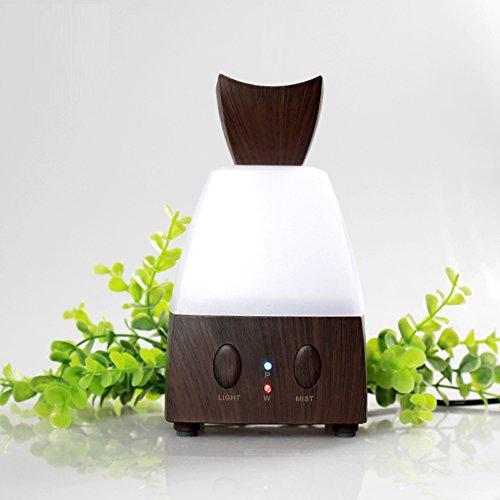 100ml Diffuseur d'Huiles Essentielles/Humidificateur Ultrasonique/Diffuseur Aroma de Parfum/diffuser aroma avec Lumière LED changeante (avec une prise électrique européenne)