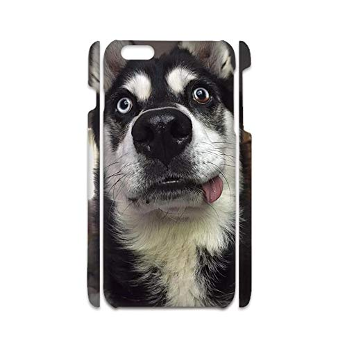 Print Siberian Husky 4 Protection Phone Cases Plastic Compatible iPhone 7Plus 8Plus 5.5Inch For Kid Choose Design 135-4