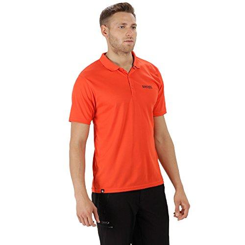 Regatta Maverick IV Poloshirt für Herren,Orange(Amber Glow),3XL