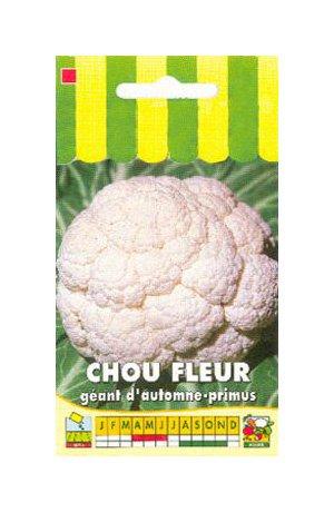 Les Graines Bocquet - Graines De Chou Fleur Géant D'Automne-Primus - Graines Potagères À Semer - Sachet De 1Grammes