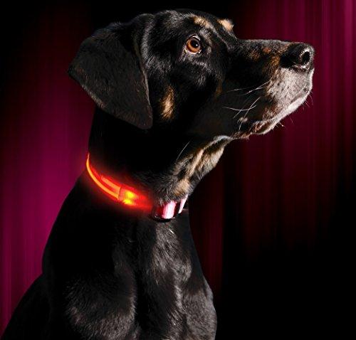 Illumiseen LED-Hundehalsband in 6 Größen / 6 Farben - Größe XXS/Pink