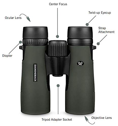 The 4 Best Binoculars for Hunting... No Joke.