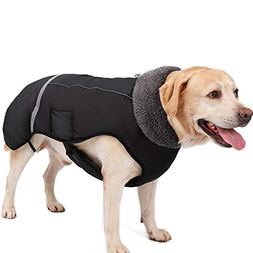 Eleoption - Impermeable caliente para invierno para perros, chaqueta chubasquero para exteriores, impermeable, reflectante, abrigo para perros pequeños, medianos y grandes. - UYI7TYU8UY, Large, Negro