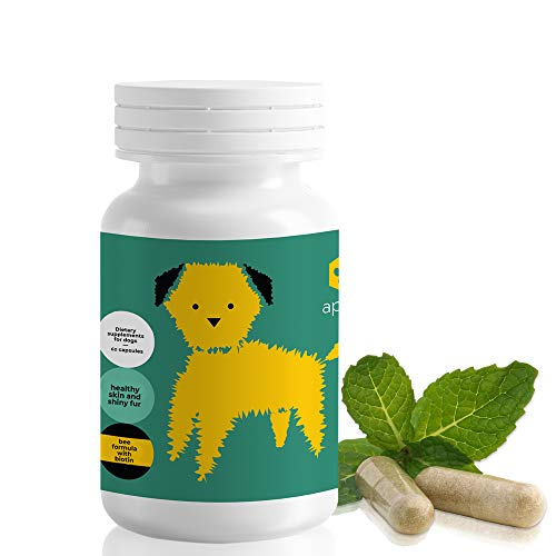 ApiPet Skin - Bee Pollen, Propolis & Biotin Supplement for Dogs - Supports Healthy Skin & Soft Shiny Coats - Itchy Allergy Relief - Vitamin Rich Pet Formula for Immune System Support - 60 Capsules