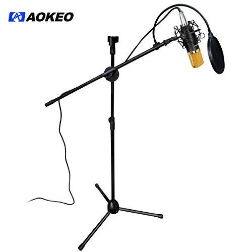 Aokeo AK-107 Professional Studio Broadcasting & Recording Condenser Mic