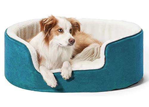 Petslover Warm Fleece Winter Beds Round Shape Reversible Ultra Soft Ethnic Designer (Export Quality) Bed with Cushion Pillow for Dog/Cat (Small, Sky Blue)