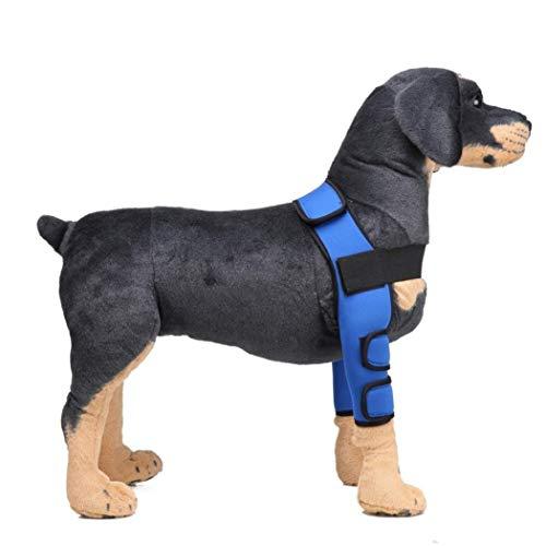 Z-PET Soporte For La Pierna del Perro del Animal Doméstico Soporte For Piernas Caninos Patas Delanteras Correas For El Corsé Proteger Heridas, Protector De Codo De Perro (Color : Blue, Size :