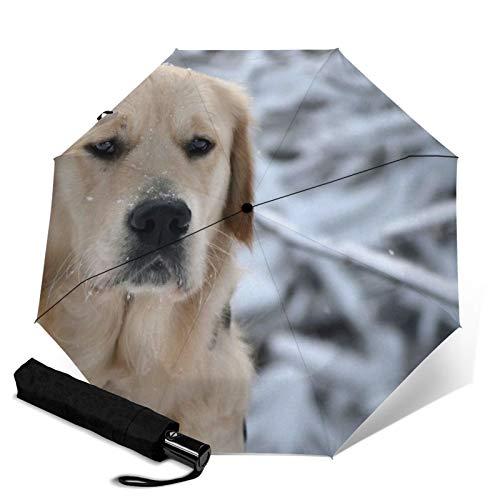 Labrador, paraguas plegable automático, resistente al agua, con tres pliegues, portátil, compacto para uso diario