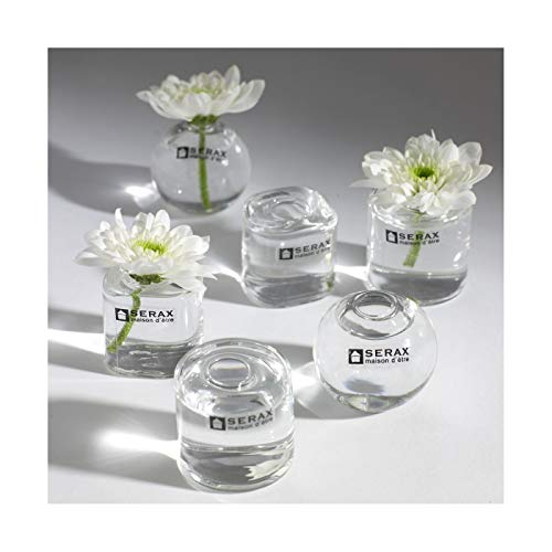 x1 REF//VER2012 HOBI Vase Soliflore Transparent vrille en Verre 50cm
