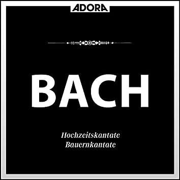 Bach: Hochzeitskantate No. 202, Bauernkantate No. 212