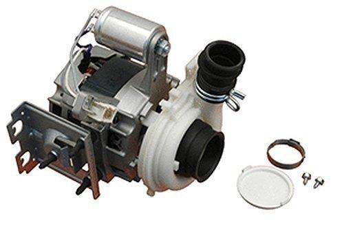 Casaricambi - Motore Pompa Lavastoviglie Ceset Cpi 2/49-101 Pnt Whirl Ignis 481236158434