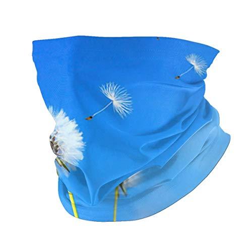 hfdff Löwenzahn Blumenfeld über Blue Sky Bandana Rave Gesichtsschutz Schal Frauen Männer für Staub Wind Sonnenschutz