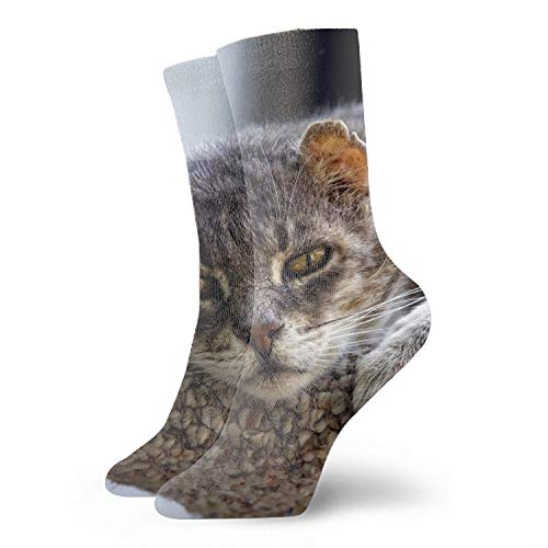 Männer/Frauen Fun Dress Socks - Amur Tiger Snow Babys Bunte lustige Neuheit Crazy Socks