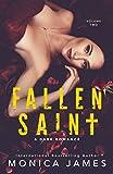 Fallen Saint: All The Pretty Things Trilogy Volume 2 (English Edition)