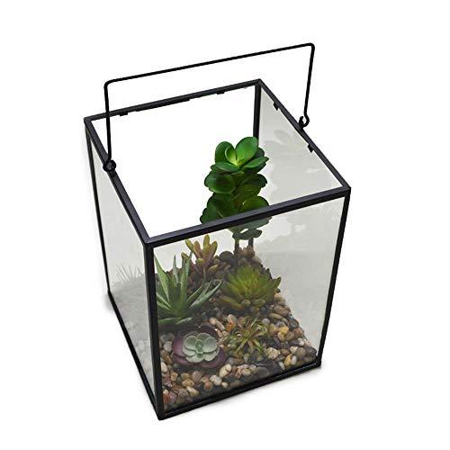 Tbaobei-Baby Geometrische Glas Container Opknoping Helder Glas Luchtplant Terrarium Thee Licht Kaars Houder Voor Succulente Luchtplanten Mos Varen Deksel Reptiel Geometrische Glas Container Gass Bloem Pot