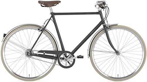 Gazelle Van Stael T7 Nexus FL Trekking Bike 2020 (28