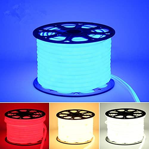 220V LED LED Luz de neón impermeable IP65 Cuerda de la tira 2835 Cinta de la cinta al aire libre con enchufe de alimentación fresco blanco rojo verde azul rgb (Emitting Color : Azul)