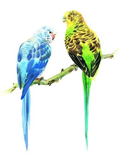 Geschilderde pruik papegaai 5D DIY diamant tekening ronde boor volledige diamant borduurwerk kruis steek door nummer plakken kunst schilderijen foto 30cmx40cm 30cmx40cm