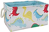 HUAYEE 19.7 Inches Large Laundry Basket Waterproof Round Cotton Linen Collapsible Storage bin with Handles for Hamper Kids Room,Toy Storage (Thick REC colorful dino)